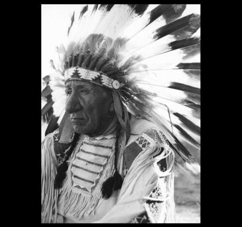 Chief Red Cloud War Bonnet PHOTO Portrait Oglala Lakota Indian