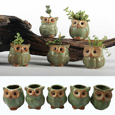 Mini Delicate Owl Ceramic Succulent Planter Flower Plant Garden Decor Gift