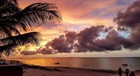 GORGEOUS SUNSETS IN CHICXULUB PUERTO