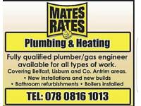 Plumber, gas installer