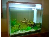 SuperFish home 40 tropical fish tank