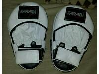 Martial arts /Punch Pads