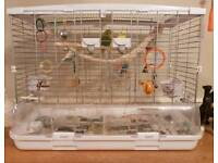 Large Hagen Vision Bird Cage and 3 young Budgies