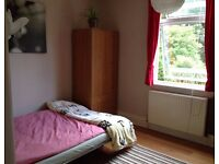 Lovely double bedroom to share in spacious house.