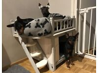 Wooden Dog Cat and Rabbit indoor House high quality,