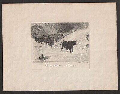 """US Sunken Engraving Sc #292 Cattle In Storm 9x7"""" E.J. Dillon"""
