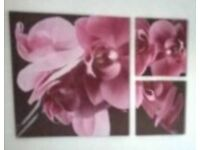 Large Trio Wall Art Canvas Orchid from Next