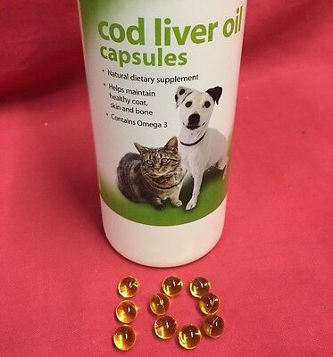 Cage Bird & Pigeon Cod Liver Oil Capsules X10 Natural Supplement Healthy Omega 3