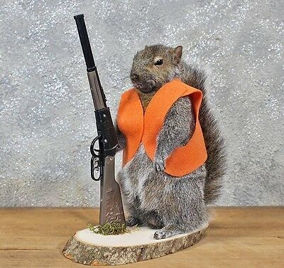 Hunter Hunting Squirrel Taxidermy Animal Statue on Base Home or Office Gift