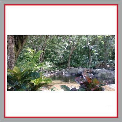 Bauzaunplane - Dschungel - Dekorfolie - Sichtschutz -  340x173cm - Motivplane
