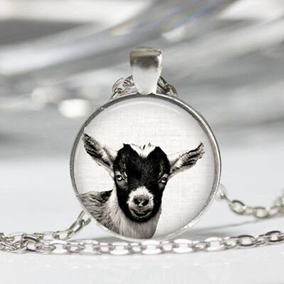 Goat Tibet silver Dome Glass Cabochon Necklace chain Pendant #215