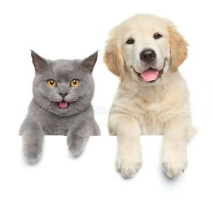 Loving Animal Care!