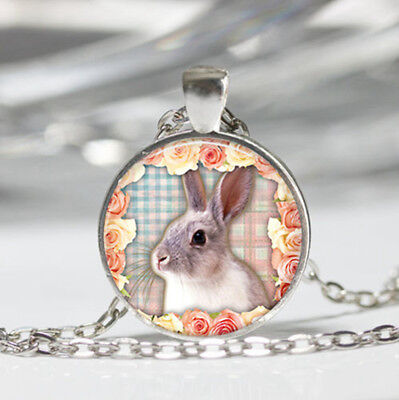 Rabbit Tibet silver dome Glass Cabochon Necklace chain Pendant #430
