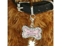 pet tag Stainless steel