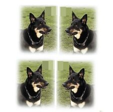 HERM SPRENGER Fur Saver Dog Collar - all sizes - German steel - highest quality