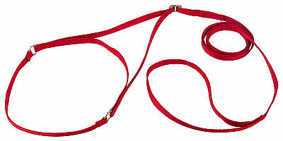 (Country Brook Design® Nylon Martingale Dog Show Lead)