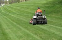 Lawn Mowing *Best prices in HRM*