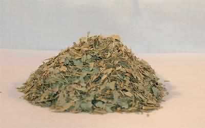 EUCALYPTUS Leaf Cut & Sifted 1 oz Bag Organic Natural Healing Herb Aromatherapy