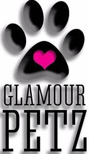 GLAMOUR PETZ Bongaree Caboolture Area Preview