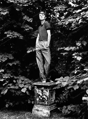 8x10 Print David Bowie 1978 Near Snowden Wales #DBS