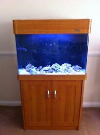 Aqua One marine fish tank auto top up protein skimmer UV sterilizer return pump