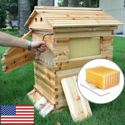 New Wooden Beekeeping Bee Hive House Box With 7pcs Autoflow Honey Beehive Frames