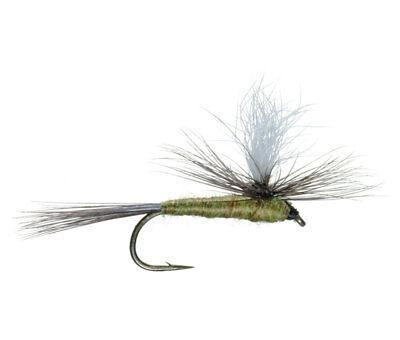 6 Size 22 COMPARA DUN BAETIS BLUE WING OLIVE PREMIUM LIGAS FLY FISHING FLIES