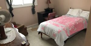 2 rooms for rent from feb 2k19( for female )