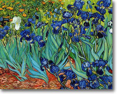 "Vincent van Gogh IRISES Stretched Canvas Giclee Art Repro 30"" x 24"" FLORAL"