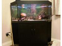 Aquarium Jewel 260 litre Corner Unit Fish Tank