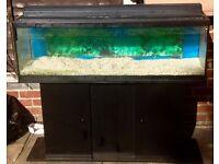 Large solid 4ft fish tank aquarium - ONLY £75