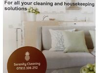 Commercial and domestic cleaning - Reliable professional lady cleaner