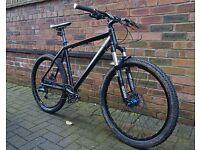 Mountain Bike- Custom Hardtail