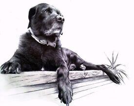 Professional Ballpoint/Biro Portrait Artist, People and Pet Portraits, Commission Artist Bournemouth