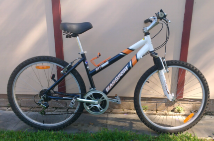 Learsport MT-3000