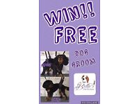 Dog Grooming Service / Puppy - WIN FREE GROOM