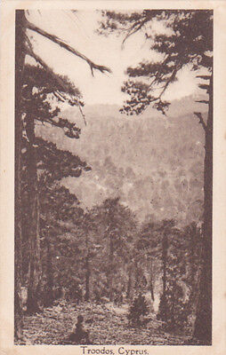 CYPRUS POSTCARD TROODOS EARLY BY FOSCOLO NO 9