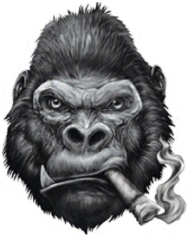 GORILLA SMOKING CIGAR BUMPER STICKER TOOLBOX STICKER LAPTOP STICKER DIE CUT