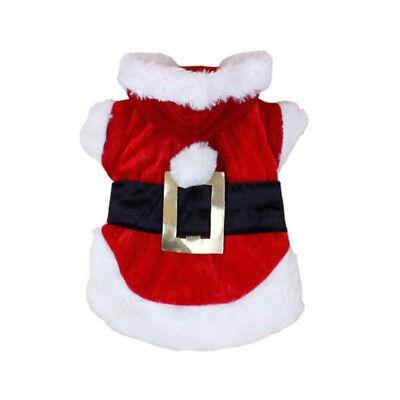 Abbigliamento costume natalizio per cane