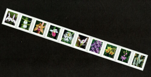 2020  Wild Orchids - Plate Number PNC Coil Strip of 10  MNH