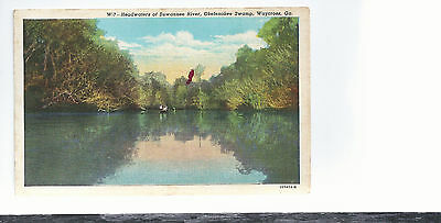 Headwaters Of Suwannee River  Okefeokee Swamp  Waycross Ga  Unused Postcard 514