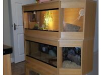 4ft Corner vivarium- custom made