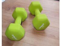 Brand New Physical Company 8kg dumbells neoprene hex