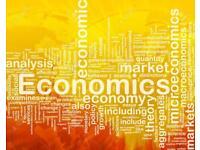 GCSE Economics tutor