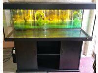 Several Fish Tanks Aquariums For Sale