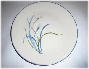 1 Corelle COASTAL BREEZE Sandstone SMOOTH COUPE DINNER PLATE *Ocean Blue Green