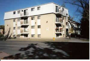 LARGE FURNISHED 2 BEDROOM - 1001 13TH ST. E.(UNIVERSITY)
