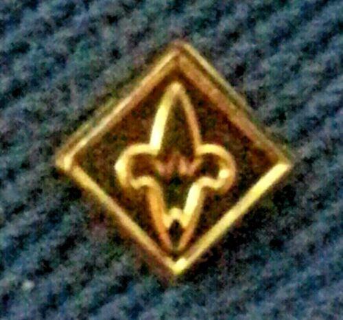 BSA WEBELOS DEVICE PIN - 1989~PRESENT - WEBELOS LOGO IN CENTER  A00498