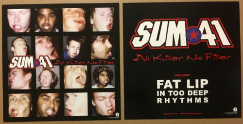 SUM 41 Rare 2001 Set of 2 DOUBLE SIDED PROMO POSTER FLAT of Killer CD MINT 12x12