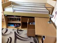 Dreams studying bunk bed